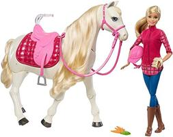 Barbie Dreamhorse Doll Playset