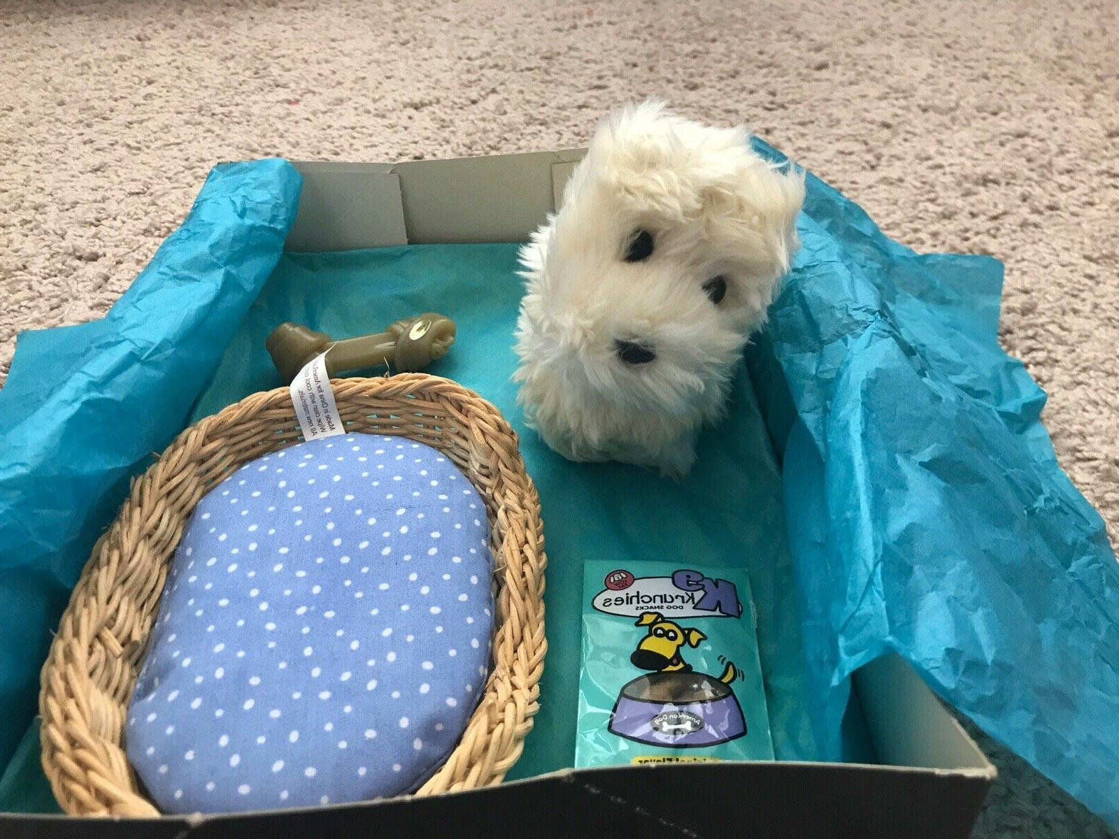 doll dog coconut 2000 first edition